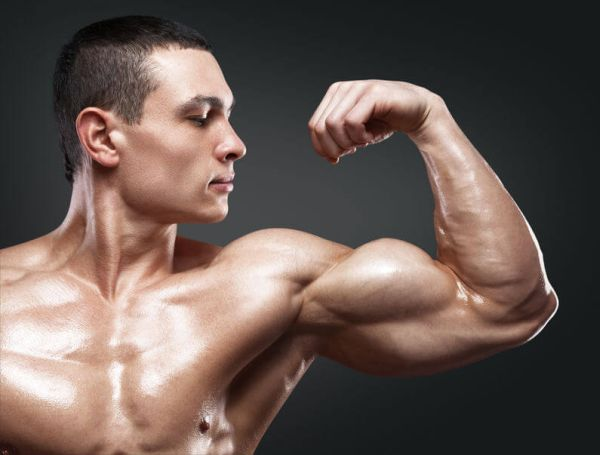 Effects of Alcohol on Muscle Development